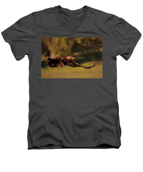 Golden Eagle On The Hunt Men's V-Neck T-Shirt