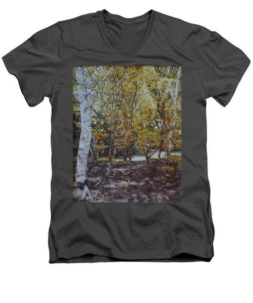 Golden Glade Men's V-Neck T-Shirt