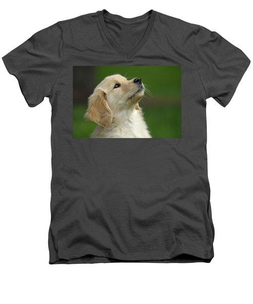 Golden Retriever Puppy Men's V-Neck T-Shirt