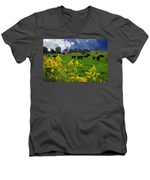 Golden Rod Black Angus Cattle  Men's V-Neck T-Shirt