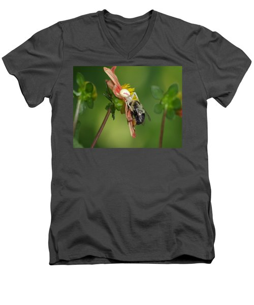 Goldenrod Spider Men's V-Neck T-Shirt