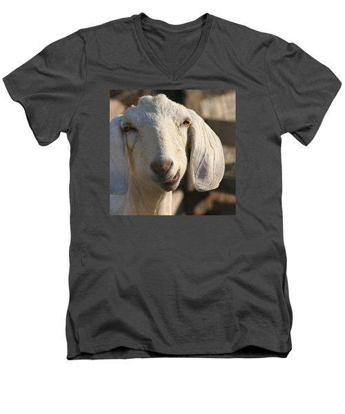 Goofy Goat Men's V-Neck T-Shirt by Art Block Collections