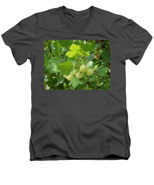 Gooseberries Men's V-Neck T-Shirt
