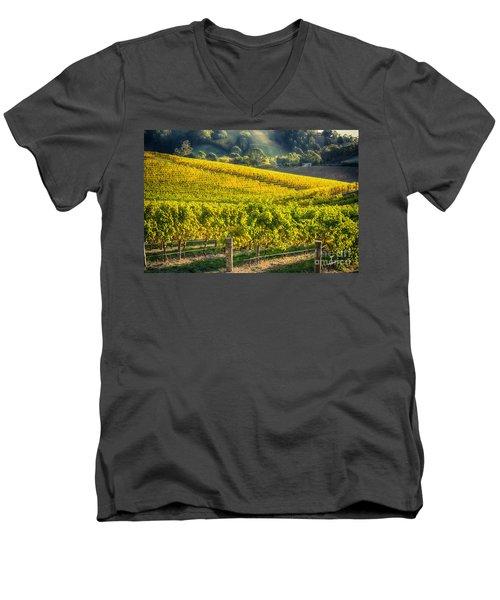 Grape Expectations Men's V-Neck T-Shirt