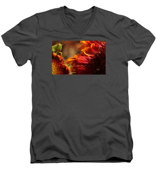 Grasshopper In The Marigolds Men's V-Neck T-Shirt