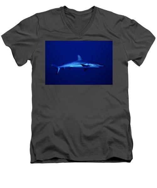 Gray Reef Shark Men's V-Neck T-Shirt