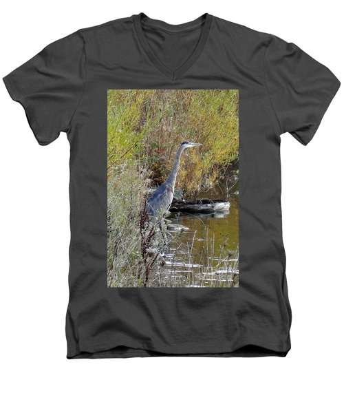 Great Blue Heron - Juvenile Men's V-Neck T-Shirt