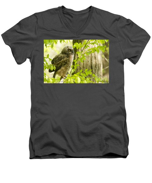 Great Horned Owlet Men's V-Neck T-Shirt