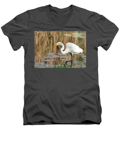 Great White Egret By The River Men's V-Neck T-Shirt