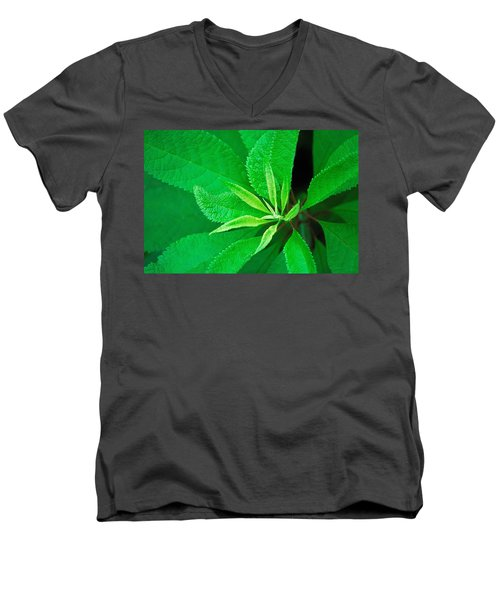 Green Men's V-Neck T-Shirt by Ludwig Keck