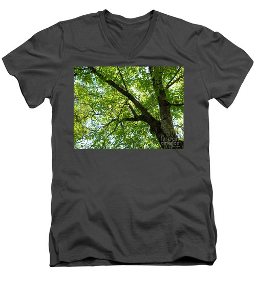 Men's V-Neck T-Shirt featuring the photograph Green by Ramona Matei