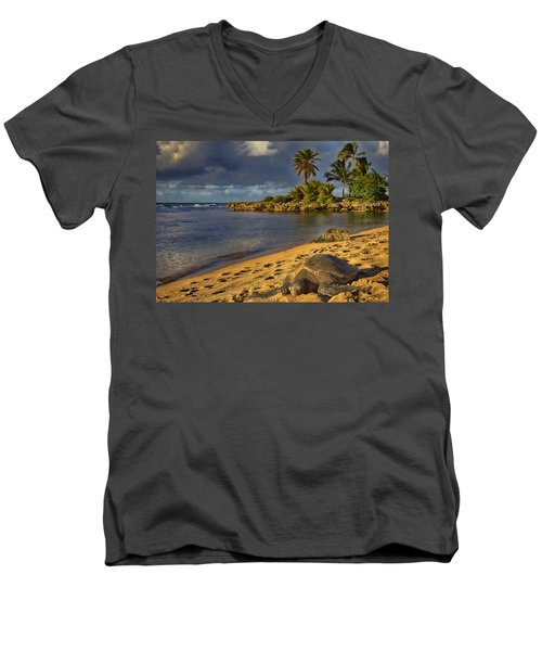 Green Sea Turtle At Sunset Men's V-Neck T-Shirt by Douglas Barnard