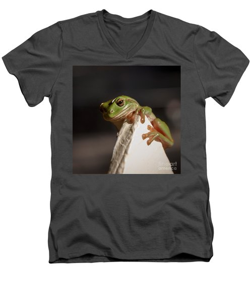Green Tree Frog Keeping An Eye On You Men's V-Neck T-Shirt