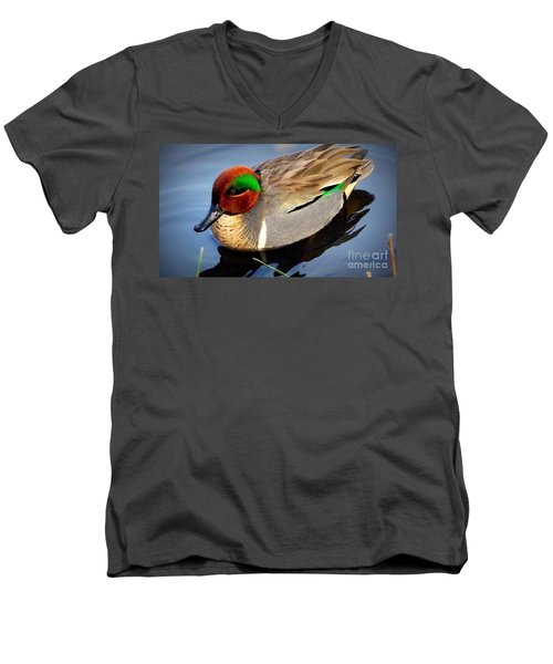 Green Winged Teal  Duck  Men's V-Neck T-Shirt