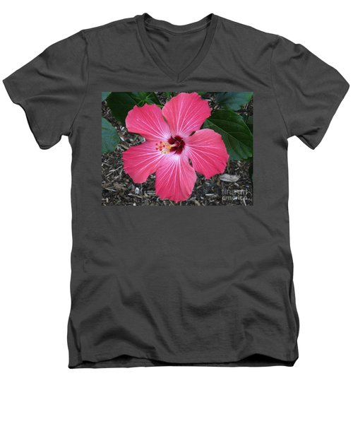 Men's V-Neck T-Shirt featuring the photograph Greetings From Florida by Oksana Semenchenko