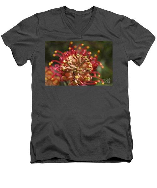 Grevillea Superb Australian Flora Men's V-Neck T-Shirt