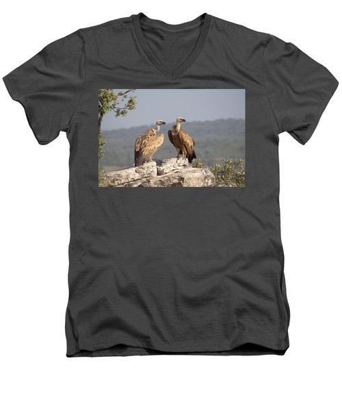 Griffon Vulture Pair Extremadura Spain Men's V-Neck T-Shirt by Gerard de Hoog