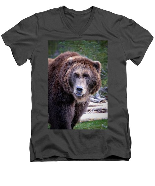 Men's V-Neck T-Shirt featuring the photograph Grizzly by Athena Mckinzie