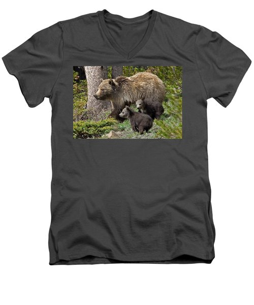 Grizzly Bear With Cubs Men's V-Neck T-Shirt by Jack Bell