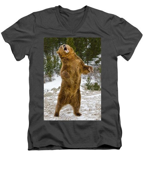 Men's V-Neck T-Shirt featuring the photograph Grizzly Standing by Jerry Fornarotto