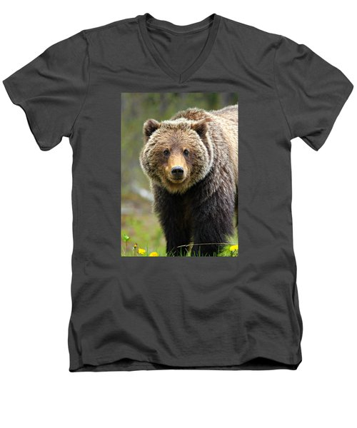 Grizzly Men's V-Neck T-Shirt