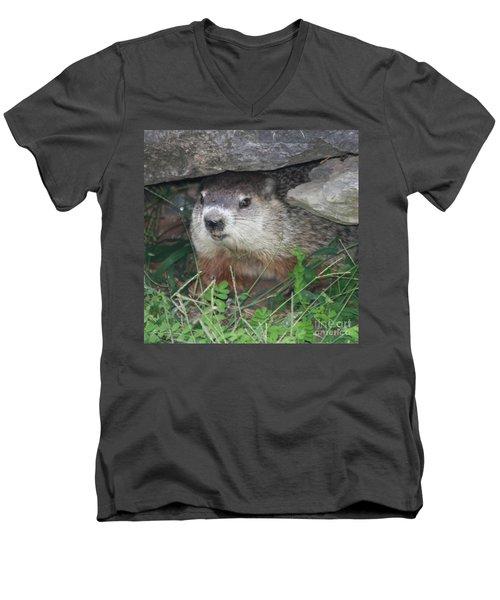 Groundhog Hiding In His Cave Men's V-Neck T-Shirt