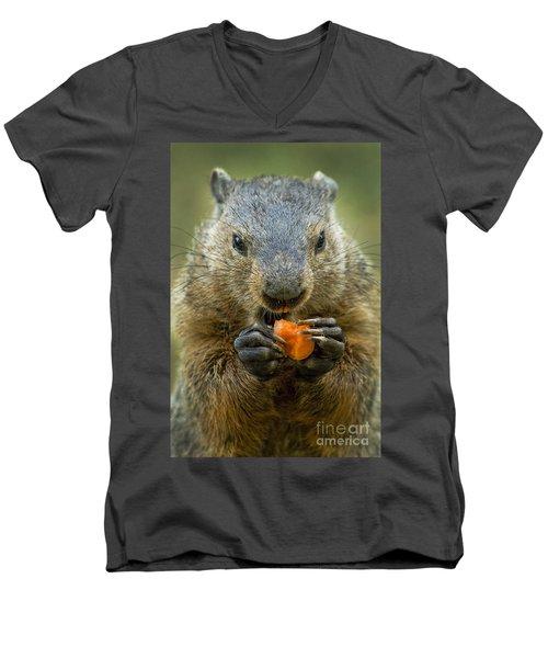 Groundhogs Favorite Snack Men's V-Neck T-Shirt