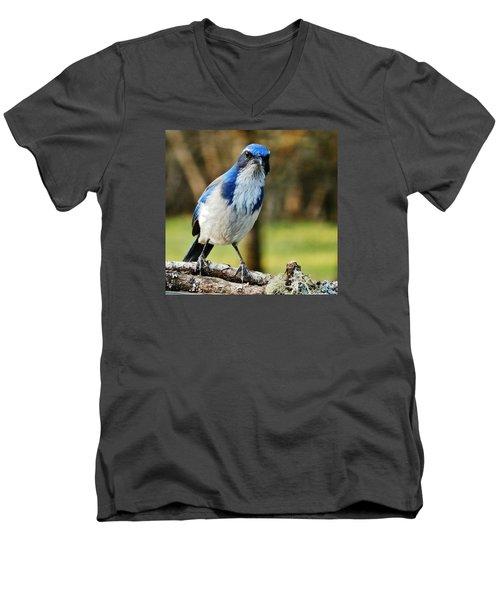 Grumpy Jay Men's V-Neck T-Shirt by VLee Watson