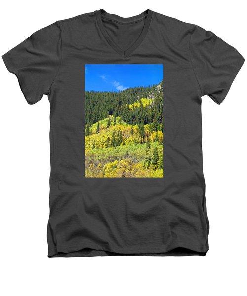 Guanella Pass Study 2 Men's V-Neck T-Shirt