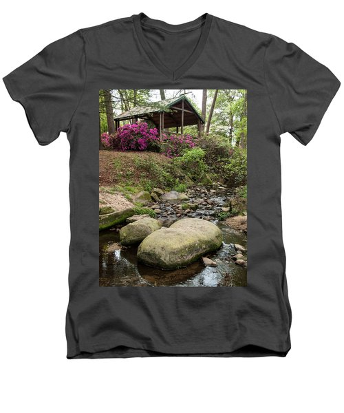 Guignard Park-1 Men's V-Neck T-Shirt