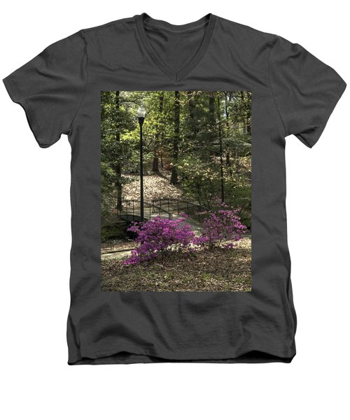 Guignard Park-2 Men's V-Neck T-Shirt
