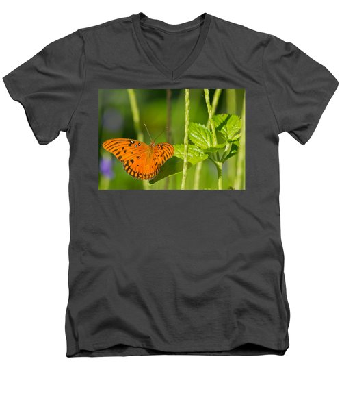 Men's V-Neck T-Shirt featuring the photograph Gulf Fritillary by Jane Luxton