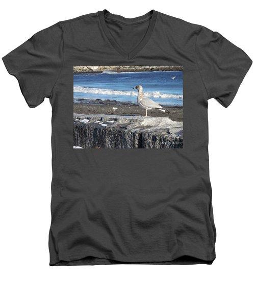 Seagull  Men's V-Neck T-Shirt by Eunice Miller