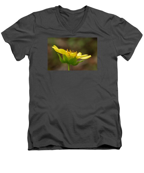 Men's V-Neck T-Shirt featuring the photograph Hairy Leafcup by Paul Rebmann