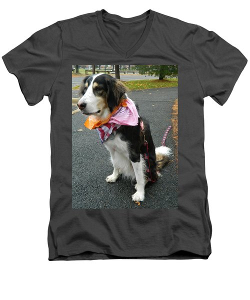 Men's V-Neck T-Shirt featuring the photograph Haley The Wonder Dog by Emmy Marie Vickers