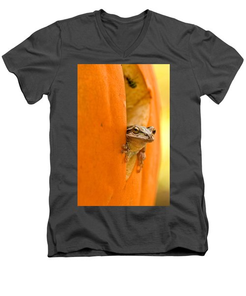 Halloween Surprise  Men's V-Neck T-Shirt
