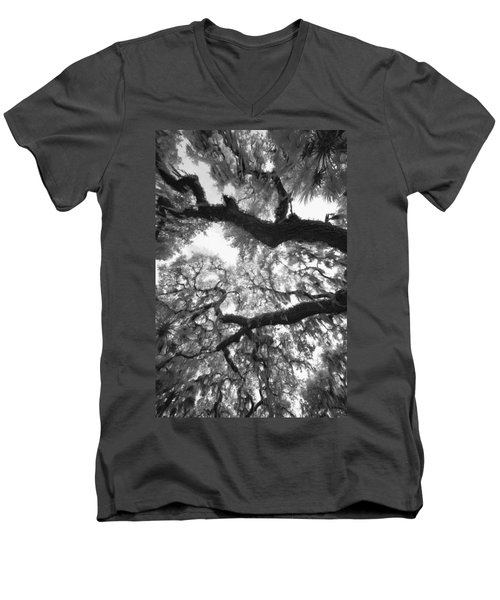 Men's V-Neck T-Shirt featuring the photograph Hanging Moss by Bradley R Youngberg