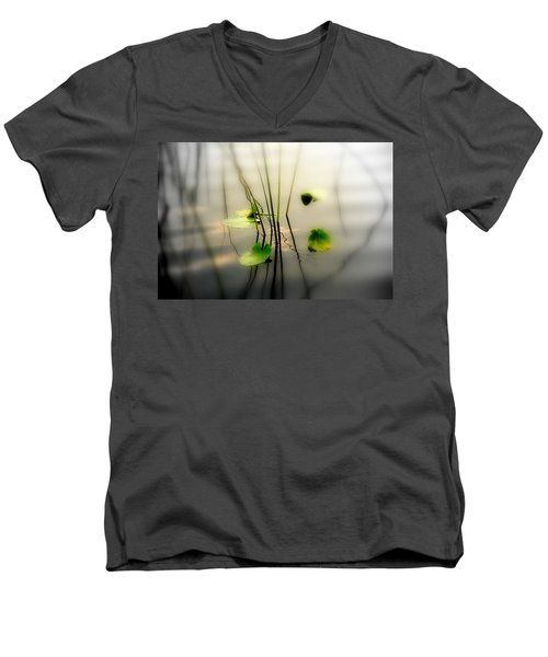 Harmony Zen Photography II Men's V-Neck T-Shirt