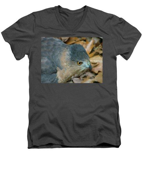 Hawk Eyes Up Close Men's V-Neck T-Shirt