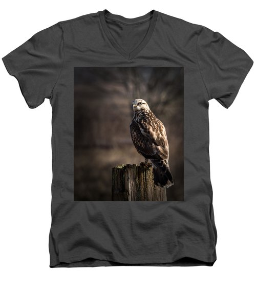 Hawk On A Post Men's V-Neck T-Shirt