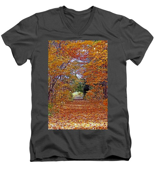 Hawthorn Hollow Men's V-Neck T-Shirt