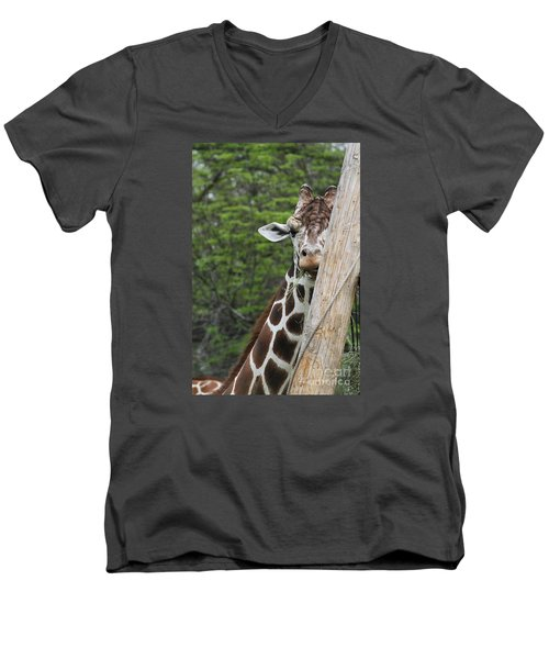 Men's V-Neck T-Shirt featuring the photograph Hay Not Just For Horses by Judy Whitton