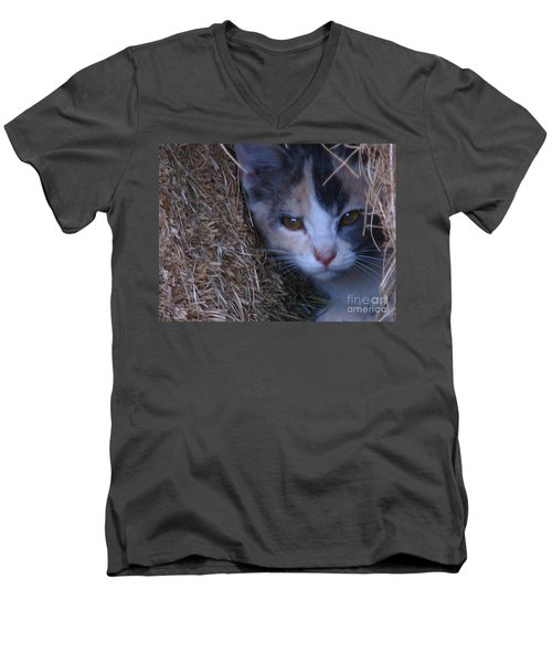 Haystack Cat Men's V-Neck T-Shirt