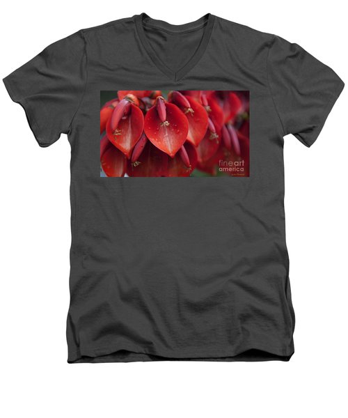 Heart Shaped - I Men's V-Neck T-Shirt
