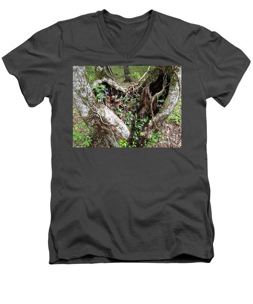 Heart-shaped Tree Men's V-Neck T-Shirt