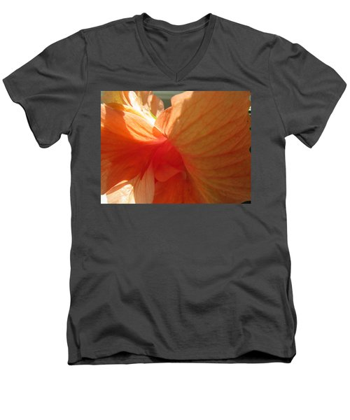 Hibiscus Butterfly Men's V-Neck T-Shirt