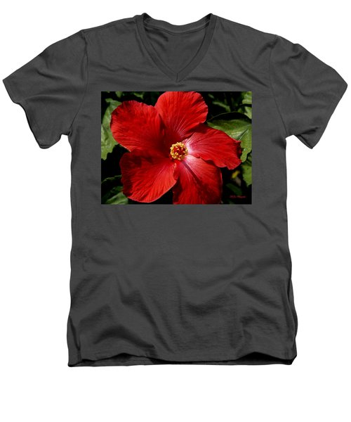 Hibiscus Landscape Men's V-Neck T-Shirt