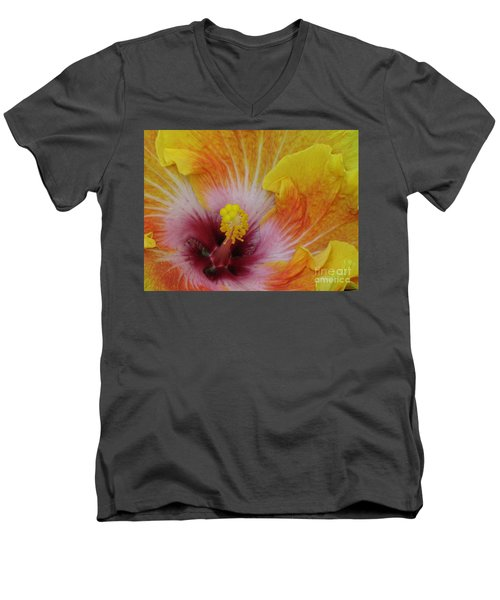 Men's V-Neck T-Shirt featuring the photograph Hibiscus by Tam Ryan