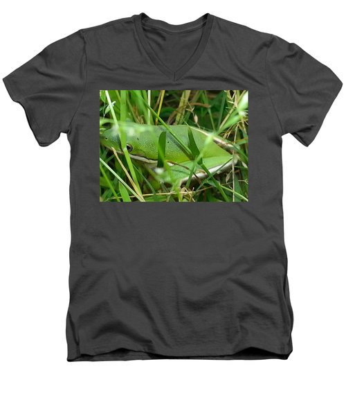 Hidden Frog Men's V-Neck T-Shirt
