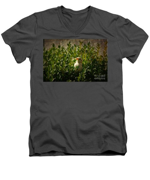 Men's V-Neck T-Shirt featuring the photograph Hide And Seek by Mariola Bitner